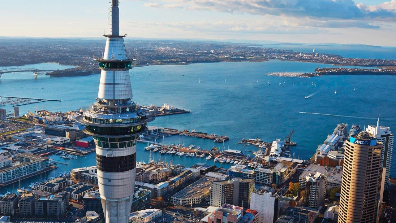 Conf-IRM 2019: Auckland, New Zealand