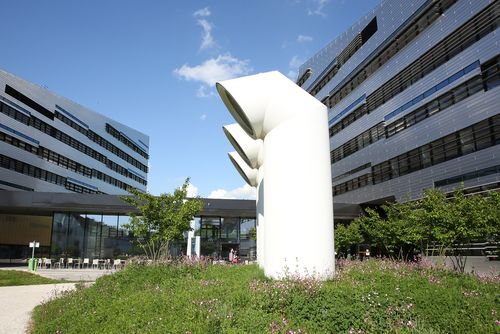 Conf-IRM 2021: Linz, Austria